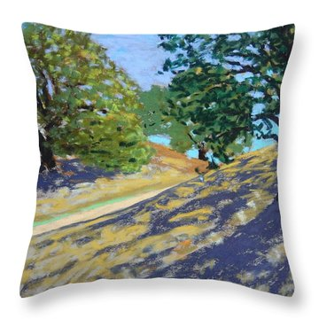 Throw Pillow featuring the painting Late Light's Shadows by Gary Coleman