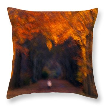 Throw Pillow featuring the photograph Late Nature Walk. by Luc Van de Steeg