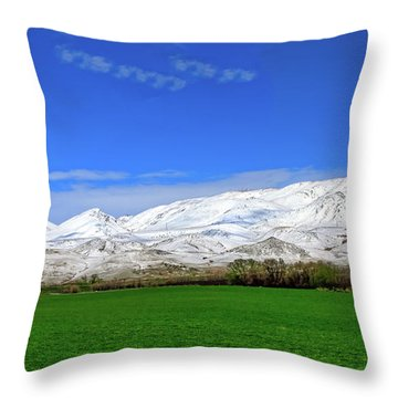 Late Spring View Throw Pillow by Robert Bales