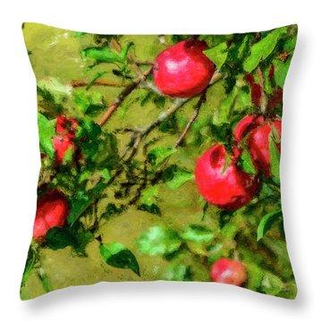 Late Summer Apples Throw Pillow by Ken Morris