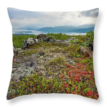 Late Summer In The North Throw Pillow