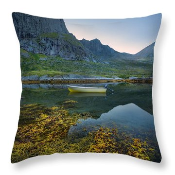 Late Summer Throw Pillow by Maciej Markiewicz