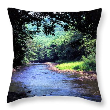 Late Summer On Williams River Throw Pillow by Thomas R Fletcher