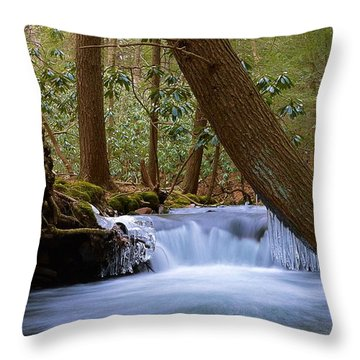 Late Winter Cascade On Cherry Run Bald Eagle State Forest Throw Pillow