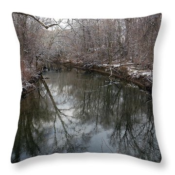 Late Winter In Philly Throw Pillow