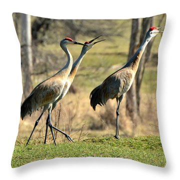 Late Winter Song Throw Pillow