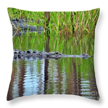 Throw Pillow featuring the photograph Later Gator by Al Powell Photography USA