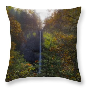 Latourell Falls In Autumn Throw Pillow by David Gn