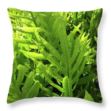 Lauae Fern Throw Pillow