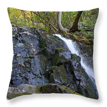 Laurel Falls Great Smoky Mountains National Park Throw Pillow