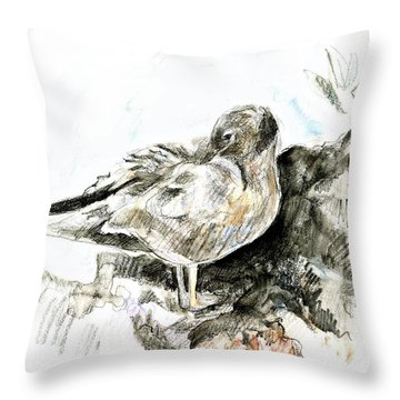 Lava Gull Throw Pillow