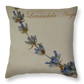 Lavandula Angustifolia Throw Pillow