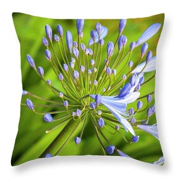 Lavendar Buds Throw Pillow