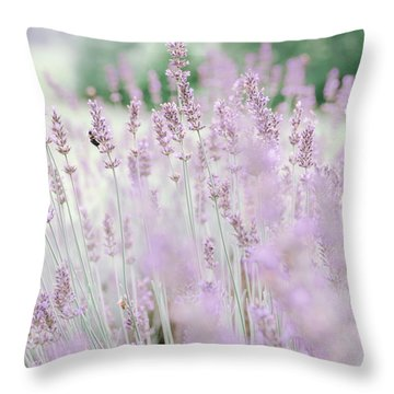 Throw Pillow featuring the photograph Lavender 6 by Andrea Anderegg