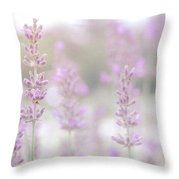 Throw Pillow featuring the photograph Lavender 7  by Andrea Anderegg
