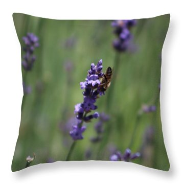 Lavender And Honey Bee Throw Pillow