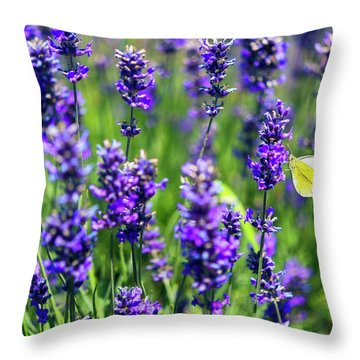 Throw Pillow featuring the photograph Lavender And The Heart by Ryan Manuel