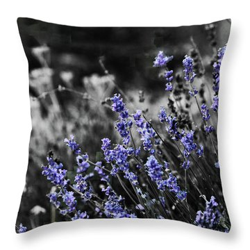 Lavender B And W Throw Pillow