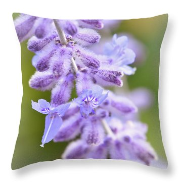 Throw Pillow featuring the photograph Lavender Blooms by Kerri Farley