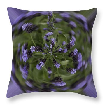 Lavender Blue Throw Pillow by Cathy Donohoue