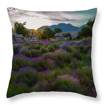Lavender Delight Throw Pillow