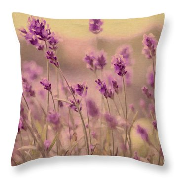 Lavender Dreaming ... Throw Pillow