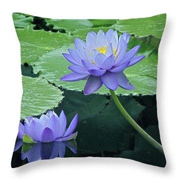 Throw Pillow featuring the photograph Lavender Enchantment by Byron Varvarigos
