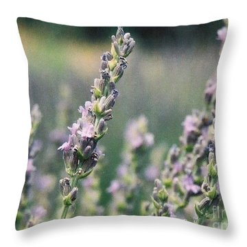 Throw Pillow featuring the painting Lavender by Eric  Schiabor