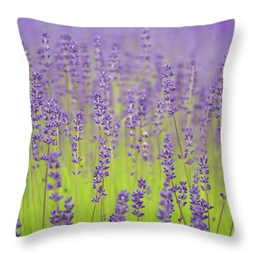 Throw Pillow featuring the photograph Lavender Fantasy by Jani Freimann