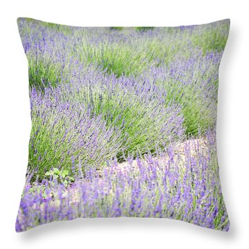 Lavender Field Farm Landscape Throw Pillow by Andrea Hazel Ihlefeld