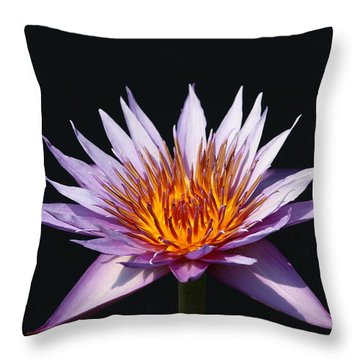Lavender Fire 1 Throw Pillow