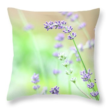 Lavender Garden Throw Pillow