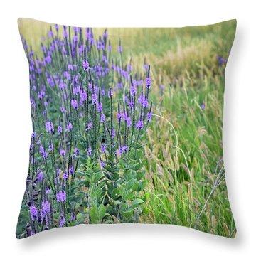 Verbena Hills Throw Pillow