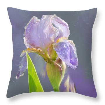 Lavender Iris In The Morning Sun Throw Pillow