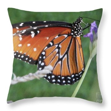Lavender Lunch Throw Pillow