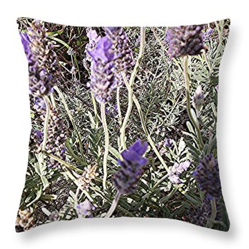 Lavender Moment Throw Pillow