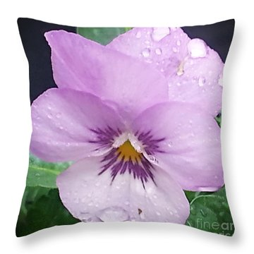 Lavender Pansy And Rain Throw Pillow