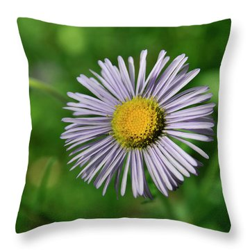 Lavender Serenity Throw Pillow