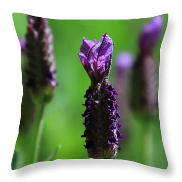 Lavender Spike Throw Pillow