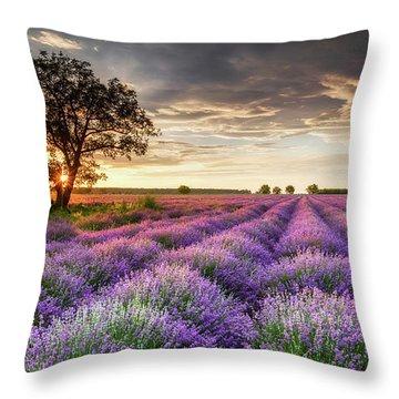 Lavender Sunrise Throw Pillow by Evgeni Dinev