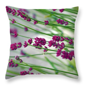 Throw Pillow featuring the photograph Lavender by Susanne Van Hulst