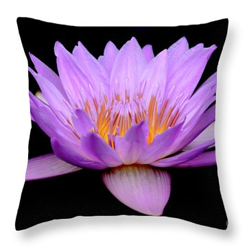 Lavender Tropical Day Lily Throw Pillow
