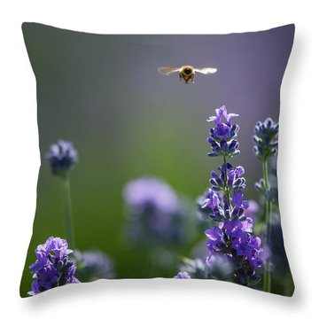Lavender User Throw Pillow