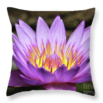 Lavender Water Lily #3 Throw Pillow