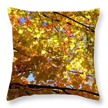 Throw Pillow featuring the photograph Layers Of Autumn by Corinne Rhode
