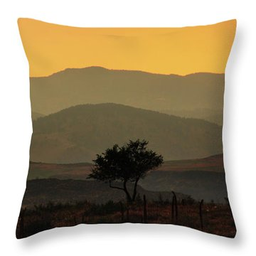 Layers Of Lucidity Throw Pillow