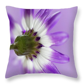 Layers Of Mauve Throw Pillow