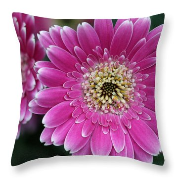 Layers Of Spring Throw Pillow by Pamela Critchlow