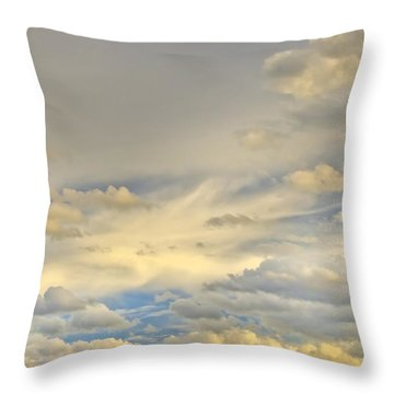Throw Pillow featuring the photograph Layers by Wanda Krack