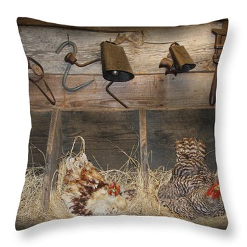 Laying Hens Throw Pillow by Kim Henderson